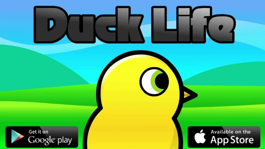 Ducks and the Meaning of Life