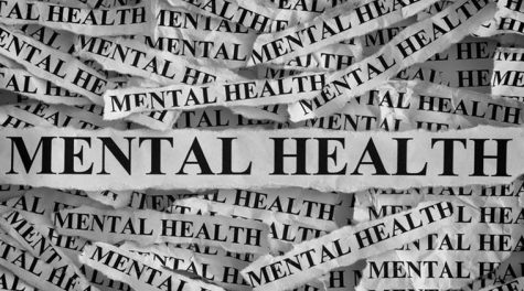 Mental health. Torn pieces of paper with the words Mental health. Concept Image. Black and White. Closeup.