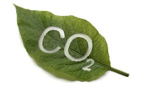 The Upside of CO2