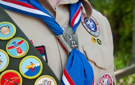 Scouts–just cookie pushers?  My experiences as a German Scout