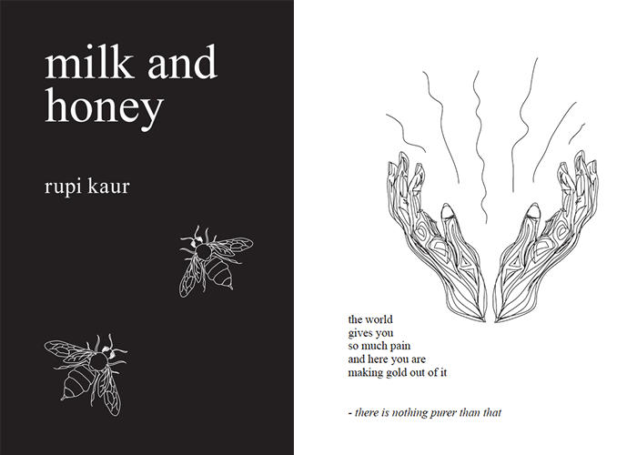 Image result for milk and honey book