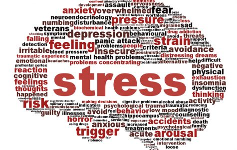 School May Cause Stress, but Does it Offer Help?