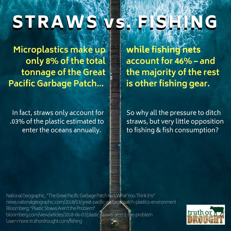 Plastic straws vs. Fishing nets