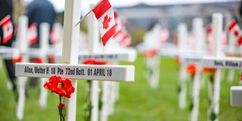 Lest We Forget: Remembrance Day 2020